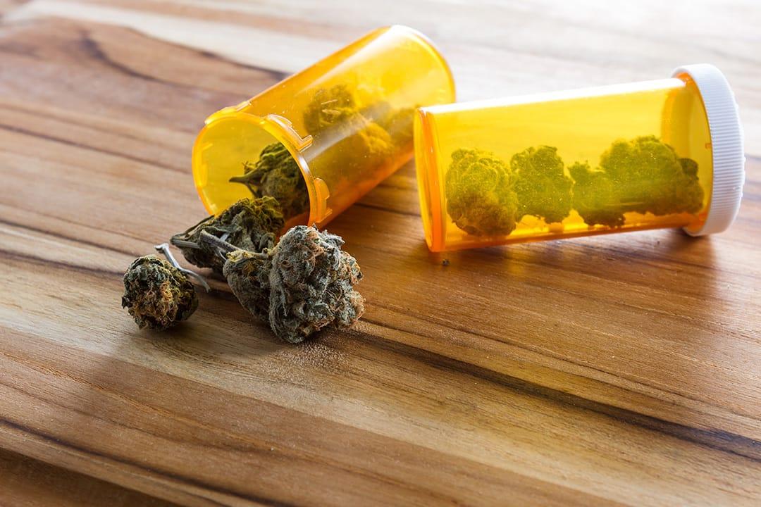 Regulación legal de las drogas…